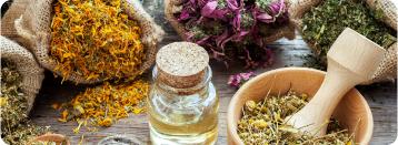 צמחי מרפא סיניים - טיפולים בקליניקה | מרכז דפנה